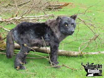 Life Sized Black Wolf Plush Display by AnimalArtKingdom