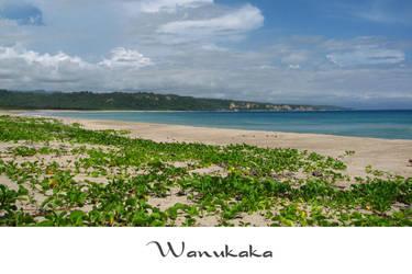 wanukaka beach by yoxx