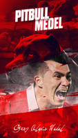 Gary Alexis Medel - Pitbull - HD Wallpaper - Red by osmanibiscrea