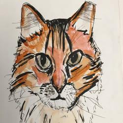 My cat, sort of by Benjorr