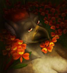 :Fantasy-Xchange: Ulario - Jadence by TheFailedDream