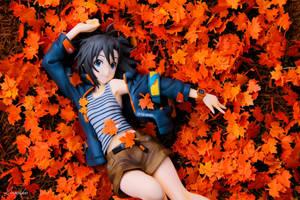 Falling Mapple Leaf by HinagikuPhotograhy