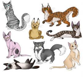 Cats I guess by Shokaya