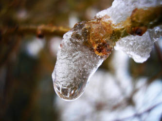 Thawing by Personal-Pariah