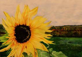 s.Sunflower by L1nski