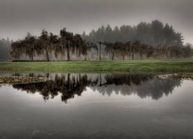 Reflexions of a Fall's end by guselektrisch