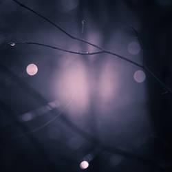 moonlight 3 by yv