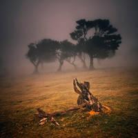 Fanal 10 - Gathering by yv