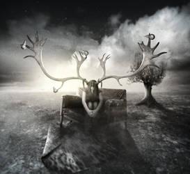 yv-elk by yv