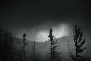 Pico de la Gorra 2 by yv