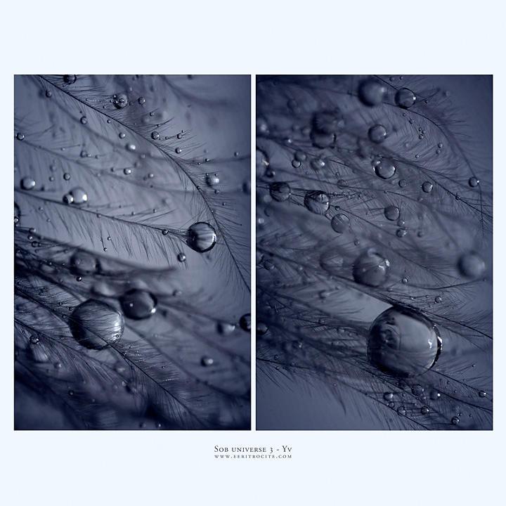 sob universe 3 by yv
