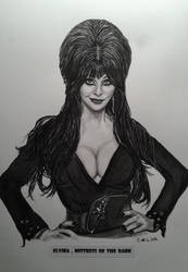 Elvira , mistress of the dark by doom-chris