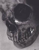 Waterlogged Skull, Skull 2 by xabigal-eyesx