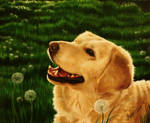 Dog heaven by MonsterMarika