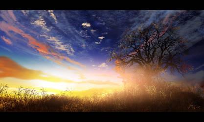 Sunrise by fxEVo