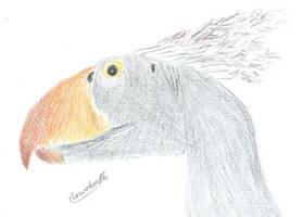 Terror bird portrait by roarodon07