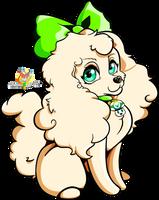 Standard Poodle by Stacona