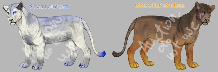 [CLOSED] Two lionesses ADOPT on AUCTION by RudaWilczyca