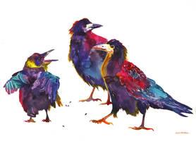 Ugly birds by takmaj