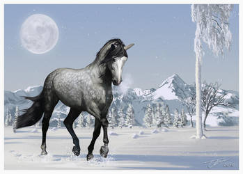 Winter Wonderland by cerona