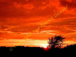 Red Sun Rising by liquidozzwald