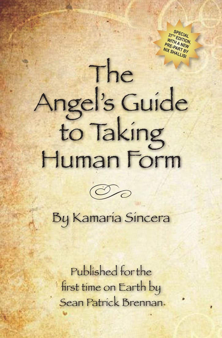 The Angel's Guide to Taking Human Form by angelenroute
