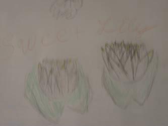 lily by darksykkurai
