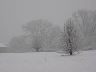 White Christmas by darksykkurai