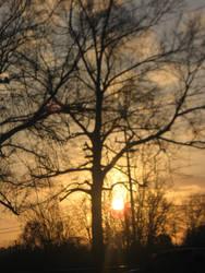 sunset by darksykkurai