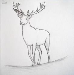 Deer by lunejaune145