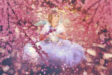 CardCapror Sakura : 47 by Amapolchen