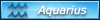 Aquarius Zodiac Badge by Neko-CosmicKitty