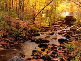 Autumn on the Nissitissit by WinterSnaps