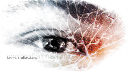 broken reflections by wertret
