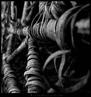 Wicker Playground by artangst