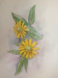 Yellow daisy by LettyDays