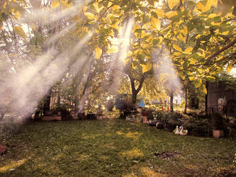 Haze by tntrekabulator
