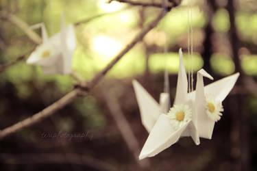 10/365 The Paper Bird by photographybyteri