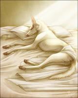 Pillow Talks by incinekaek