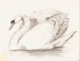 Swan by PixlPhantasy