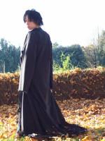 King and Fall by suzaku3