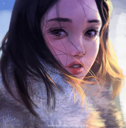 Winter sunset by Seojinni