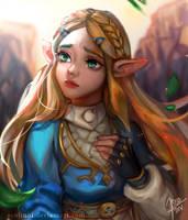 BotW Zelda by Seojinni