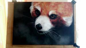.: Panda :. by O-Shana
