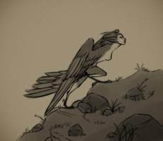 Harpy by Torrentpelt