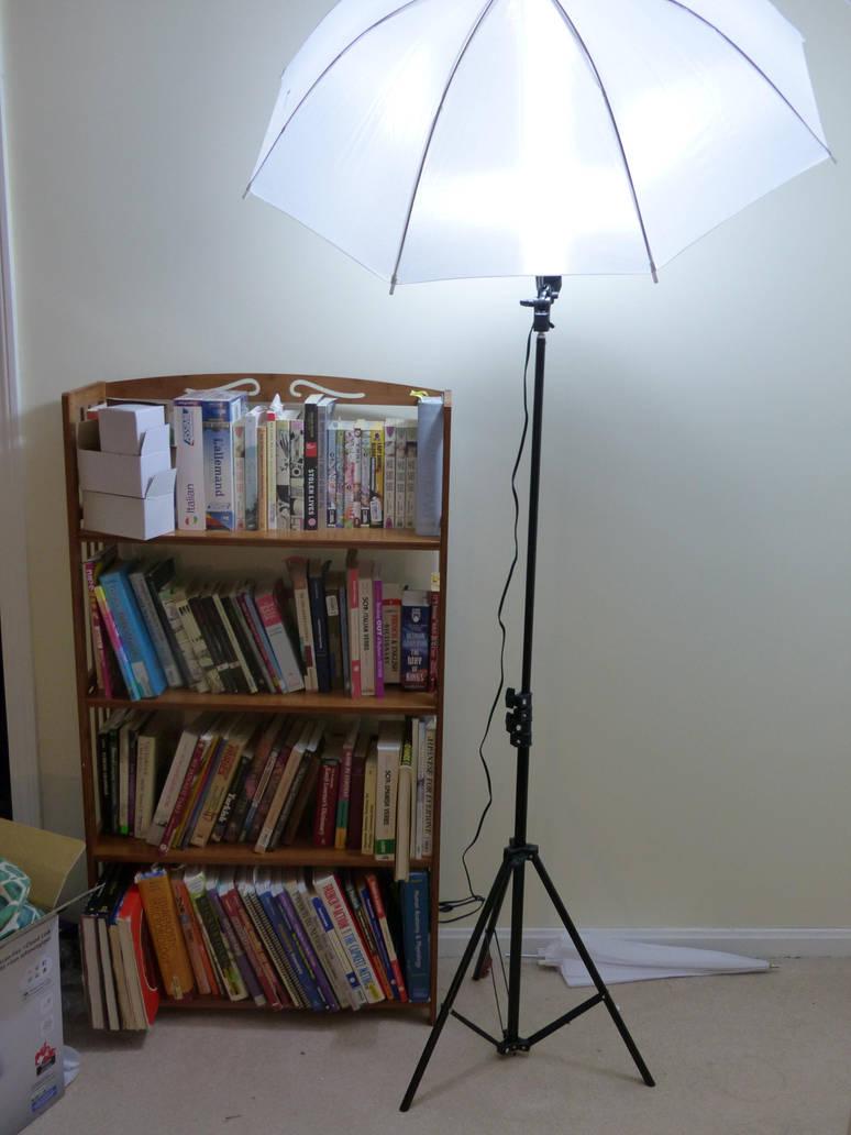 Bookshelf and Lamp by Hestia-Edwards