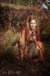 Lady of Balgay I by SonOfTheSea