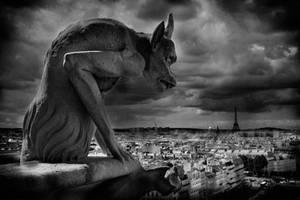 le gardien de Paris Notre Dame by dogeatdog5