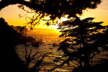 Big Sur Evening by dogeatdog5