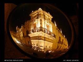 Twisted Reflexions by levhita